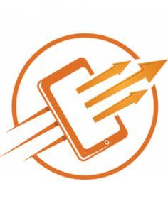 Flame concepts logo